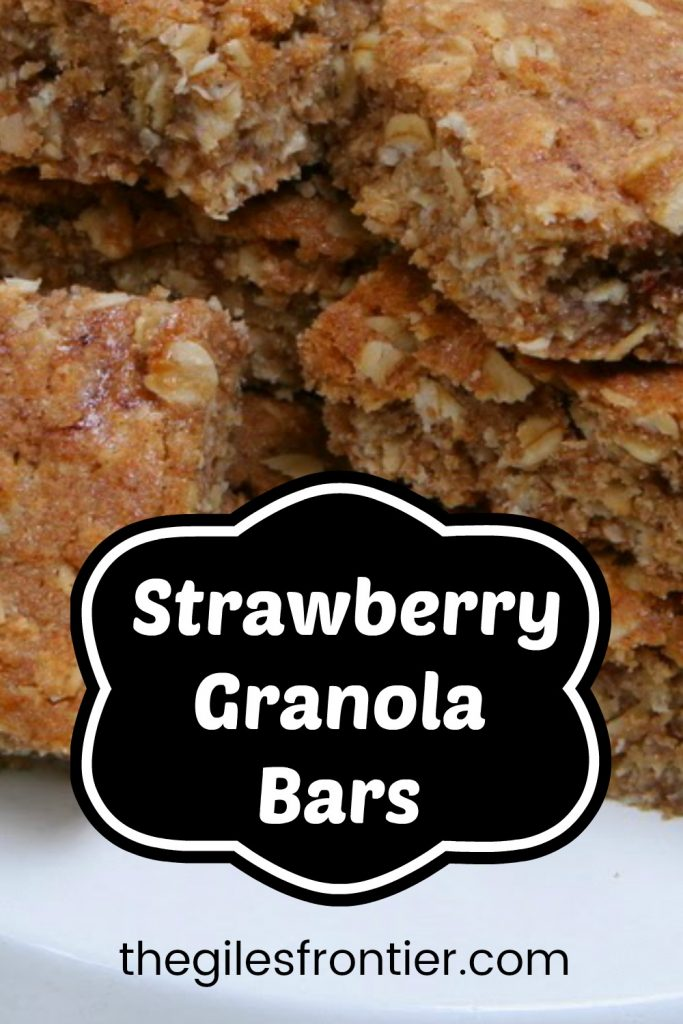 strawberry granola bars