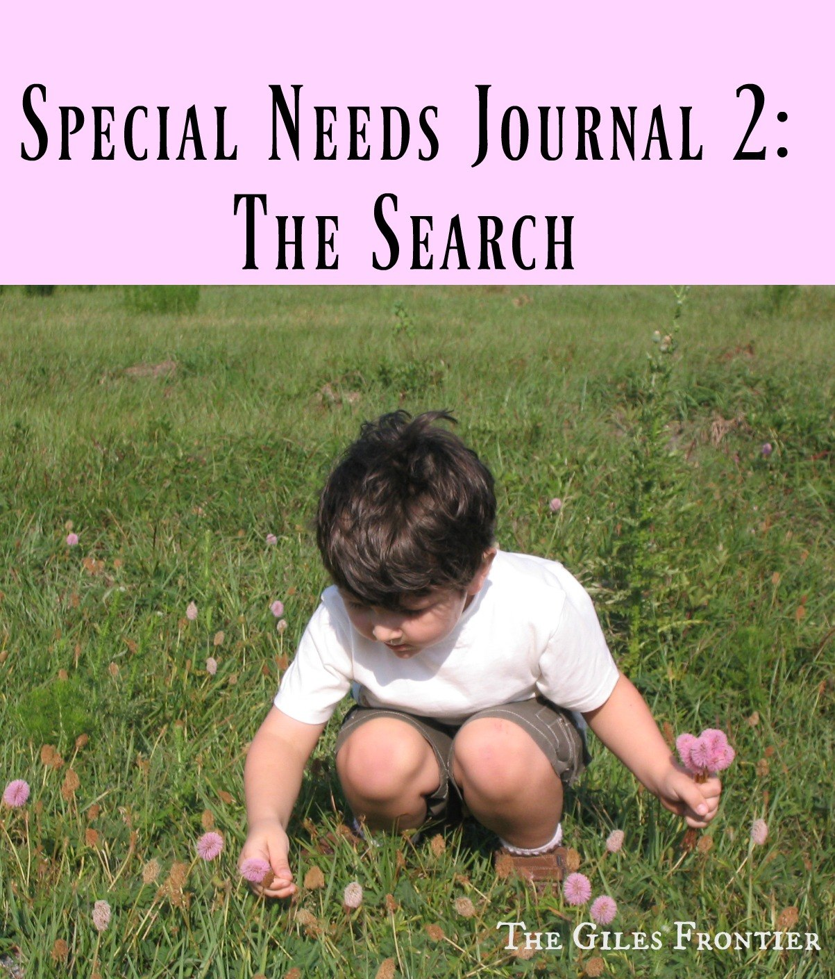special-needs-journal2