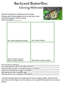 homeschool science curriculum milkweed