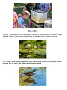 frog science curriculum photos