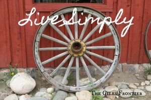 pioneer curriculum live simple