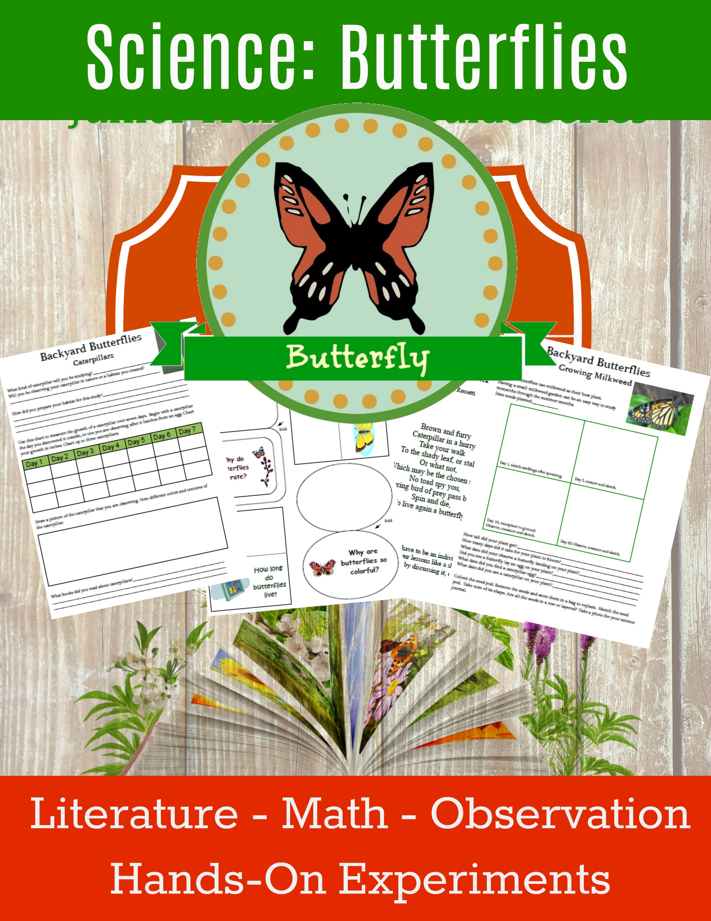 homeschool science curriculum butterflies unit